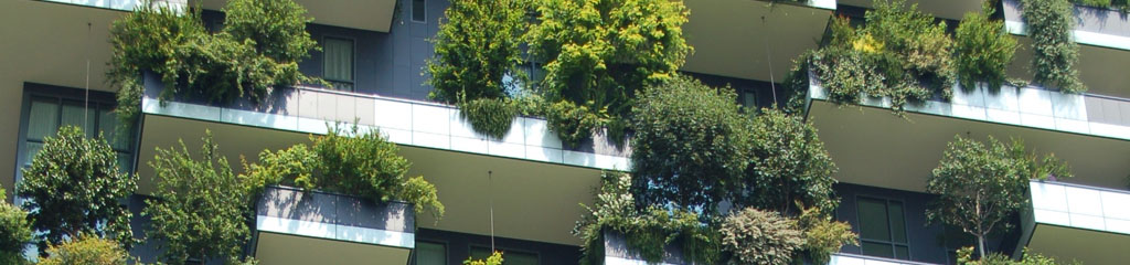 Apartment building with plants and trees on balconies Photo by Chris Barbalis on Unsplash